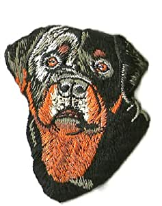 Amazon.com: Rottweiler DOG Head Front Embroidered Iron on