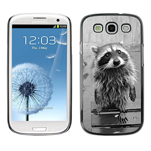 Omega Case Strong & Slim Polycarbonate Cover - Samsung Galaxy S3 Iii I9300 ( Cute Funny Raccoon )