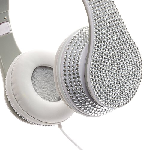 Crystal Case Foldable Dj Stereo Headphones W/ Handsfree Mic (Silver)