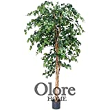 Green Ficus Tree 6ft - Artificial Tree
