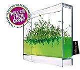 Globus Plantarium Super Educational Kit by Globus