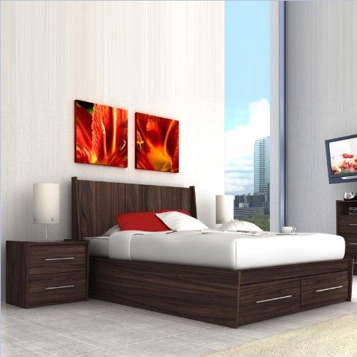Sonax Pacific Contemporary Ebony Pecan Queen Bed 2 Piece Set