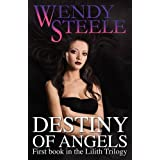 Destiny of Angelsby Wendy Steele