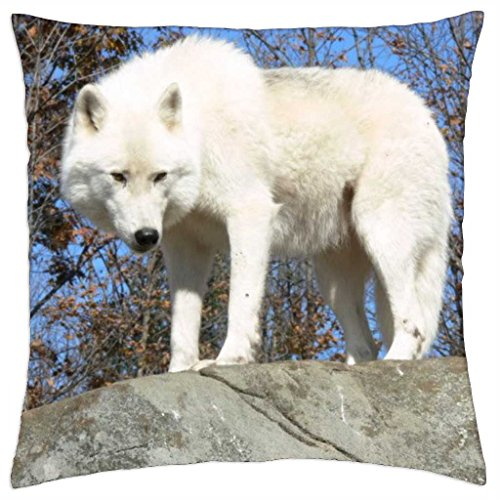 "White Wolf on a Rock looking Down - Throw Pillow Cover Case (18"" x 18"")"