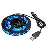 Amazon.co.jpKaito Denshi(海渡電子) USB 防水 LED テープ ライト 青色 1チップ 30cm DC5V
