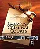 img - for American Criminal Courts: Legal Process and Social Context book / textbook / text book