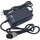 iMeshbean® 24V Scooter Battery Charger For Razor E100 E125 E200 E300 E500 USA Seller