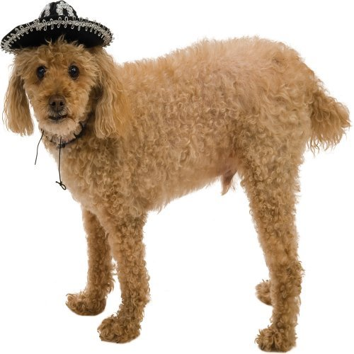 Mini Sombrero Hat Pet Halloween Costume