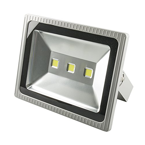 100 watt led strahler storeamore. Black Bedroom Furniture Sets. Home Design Ideas