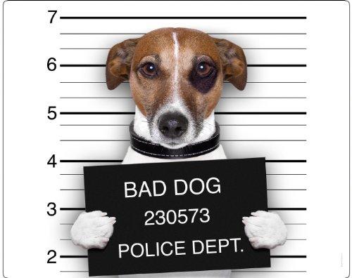 chico-dei-cani-gangster-mousepad-tappetino-per-mouse-motivo-16-il-famoso-chico-un-jack-russell-terri