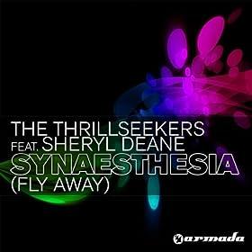 Synaesthesia (Fly Away) (Paul van Dyk Dub Mix)