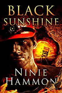 (FREE on 10/24) Black Sunshine by Ninie Hammon - http://eBooksHabit.com