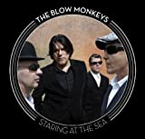 STARING AT THE SEA The Blow Monkeys