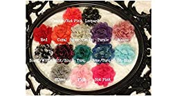 Tacie\'s Boutique~(10)pcs. Lace Chiffon Flower Hair Clips~4\