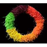 Exotic Creations Tangle Twist - Dried flower wreath(L=40 cm X W=40 cm X D= 40 cm)