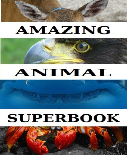 Free Kindle Book : The Amazing Animal Superbook