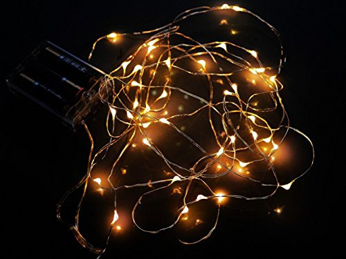 Tlt 1.5M Battery Operated Copper Wire String Lights With 30 Leds (Warm White), Great For Christmas Wedding Garden Decor Led022Y