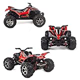 Vatos RC Car Off Road High Speed 4WD 40km/h 1:24 Scale 50M Remote Control 30mins Playing Time 2.4GHz Electric Vehicle with Rechargeable Battery (Charger Included)