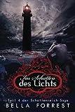 Das Schattenreich der Vampire 4: Im Schatten des Lichts (Volume 4) (German Edition)