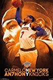 New York Knicks - C Anthony 14 Poster 22 x 34in