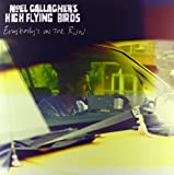Noel Gallagher's High Flying Birds Everybody's On The Run [VINYL]