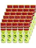 DUNLOP(ダンロップ) テニス ボール セントジェームス(St.JAMES) 4球×30缶(120球) STJAMESE4CS120 1箱 箱売り ケース販売