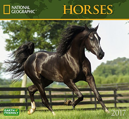 National Geographic Horses 2017 Wall Calendar