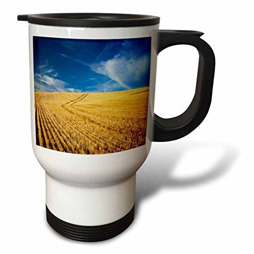 Danita Delimont - Farms - Farm Fields, Harvest Wheat, Palouse, Washington, USA - US48 TEG0425 - Terry Eggers - 14oz Stainless Steel Travel Mug (tm_148727_1)
