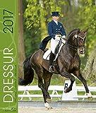 Dressur 2017: Dressur Sport