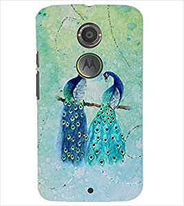 PrintDhaba PEACOCK PAIR D-6824 Back Case Cover for MOTOROLA MOTO X2 (Multi-Coloured)