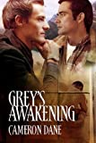 Grey's Awakening (English Edition)