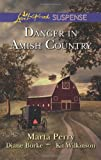 Danger in Amish Country: Fall from Grace\Dangerous Homecoming\Return to Willow Trace (Love Inspired Suspense)