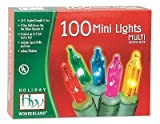 Holiday Wonderland #565223 100-Count Multi Color Christmas Light Set