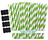 Outside the Box Papers Stripe Paper Straws 7.75 Inches Pack of 100 Lime Green, White
