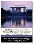 Methane Recovery from Animal Manures: The Current Opportunities Casebook