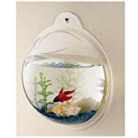 Wall Mounted Acrylic Fish Bowl by KAZE HOME