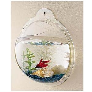 Wall Mounted Acrylic Fish Bowl by KAZE HOME