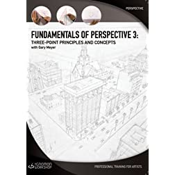 Fundamentals of Perspective 3