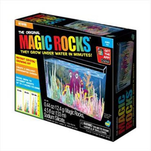 Toysmith Magic Rock Deluxe Box