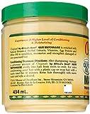 Africas Best Organics Hair Mayonnaise, 15 oz