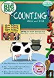 Counting: Zero and 1-12: Whats the BIG Idea? Workbook (What the Big Idea Workbook Series Pre-K-K)