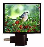 Bird Night Light - Northern Mockingbird