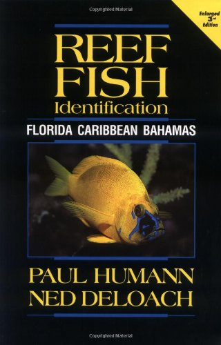 Reef Fish Identification: Florida, Caribbean, Bahamas