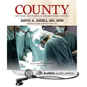 Life, Death, and Politics at Chicago's Public Hospital  - David A. Ansell