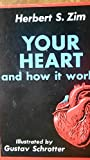 Your Heart and How It Works