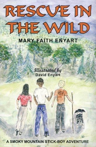 Mary Faith Enyart - Rescue in the Wild: a Smoky Mountain Stickboy Adventure
