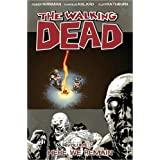 The Walking Dead Volume 9: Here We Remain: Here We Remain v. 9by Charlie Adlard