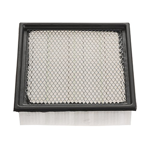Champion CAP10262 Panel Air Filter (2014 Ford F150 Air Filter compare prices)