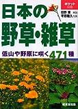 日本の野草・雑草―低山や野原に咲く471種 (ポケット図鑑)