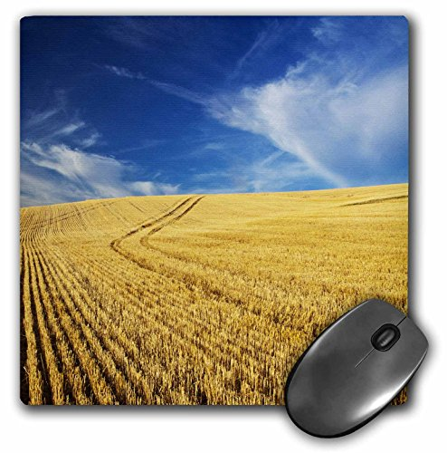 Danita Delimont - Farms - Farm Fields, Harvest Wheat, Palouse, Washington, USA - US48 TEG0425 - Terry Eggers - MousePad (mp_148727_1)